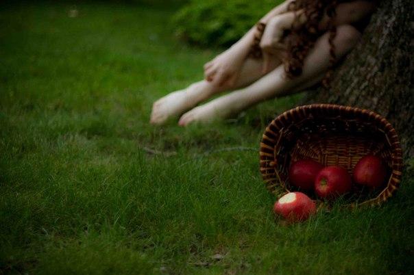 Пахучі яблука дарує рання осінь