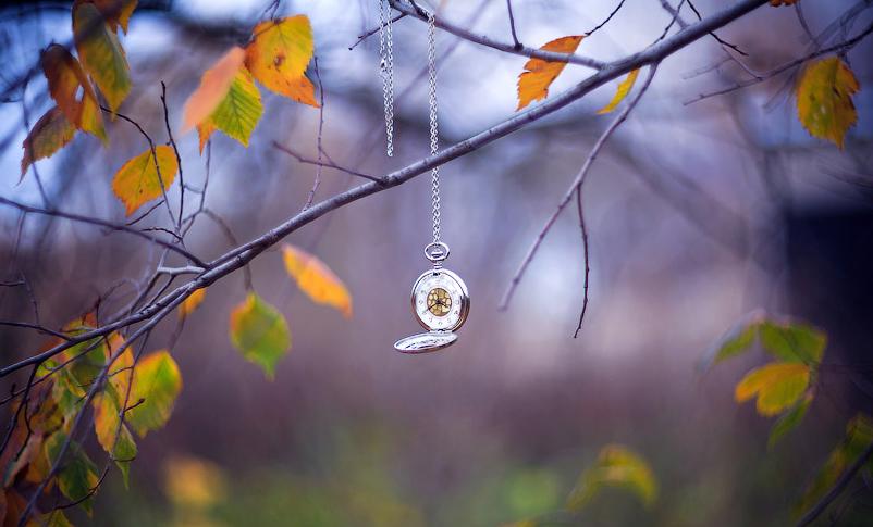 Підступна осінь плете свої тенета...