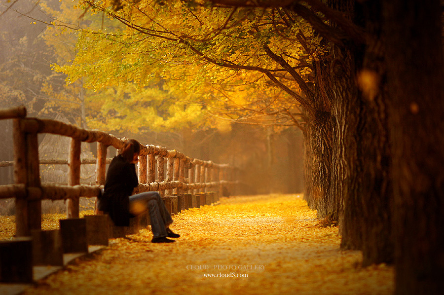 Так починається осінь