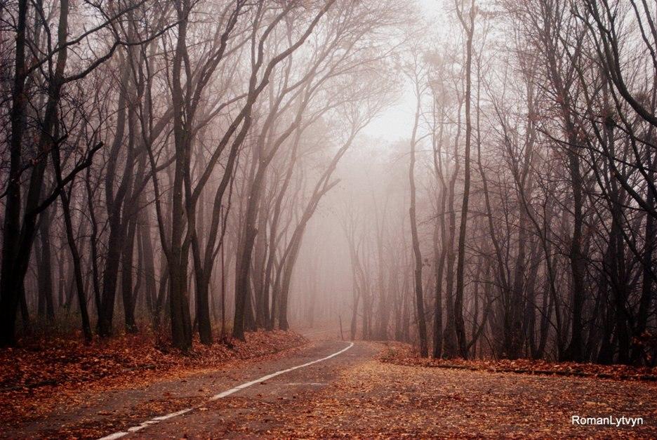Від осені на пам'ять тільки спогади...